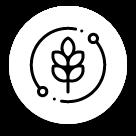 Agri Resort | Storia e Agricoltura Sociale